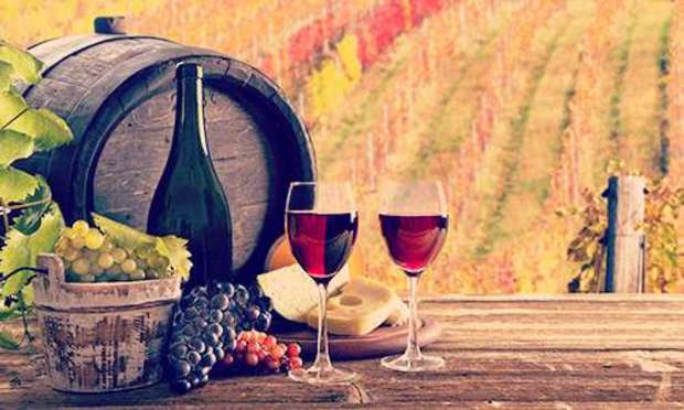 Vineyard Tour Hen Weekend Activities | Hen Weekends